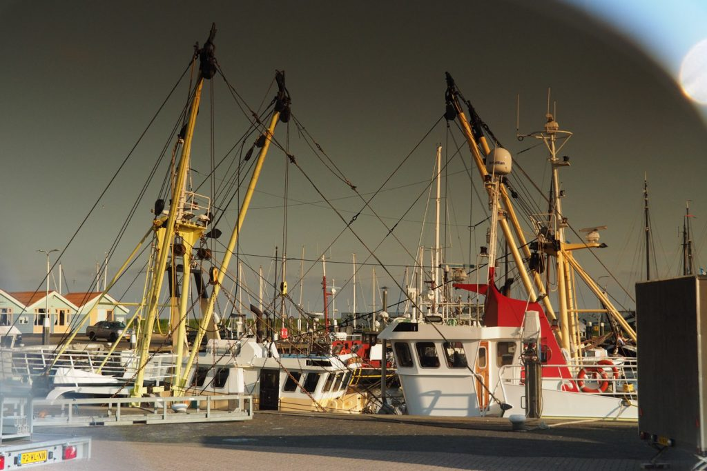 Texel's fishing fleet seen through sunglasses