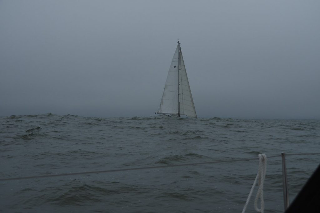Waves and fog en route to Rotterdam